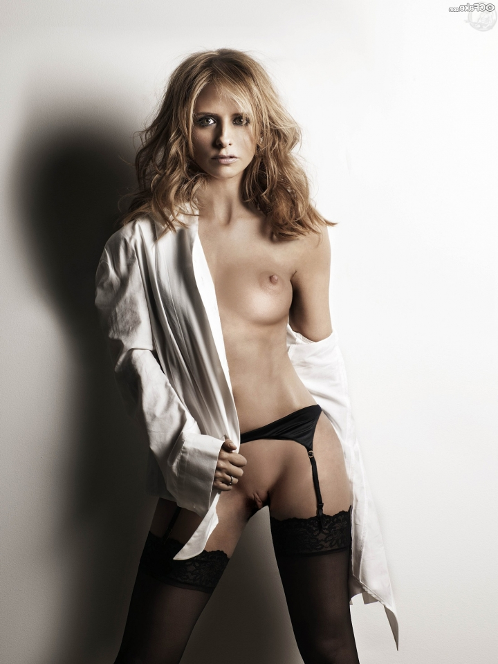 Sarah Michelle Gellar nude fakes 24 - Sarah Michelle Gellar Nude Porn Sex Images